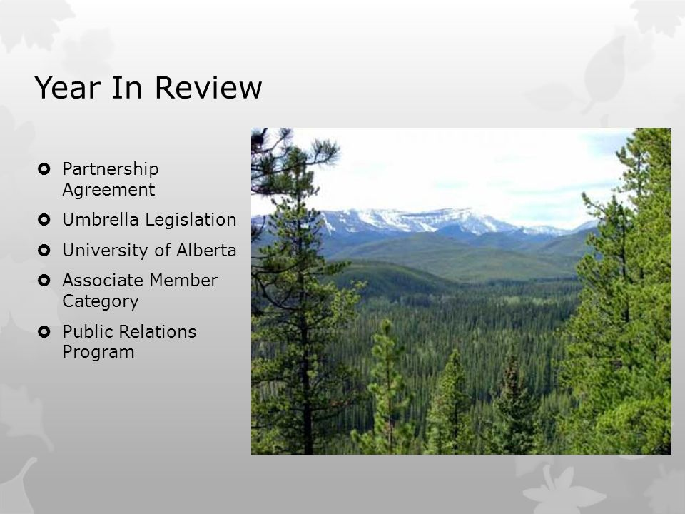 Year In Review  Partnership Agreement  Umbrella Legislation  University of Alberta  Associate Member Category  Public Relations Program