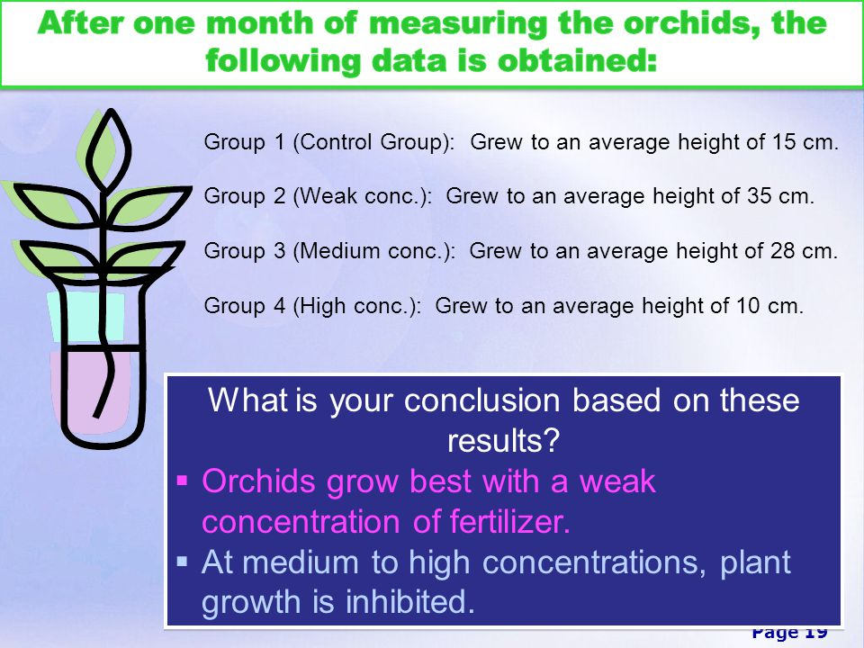 Page 19 Group 1 (Control Group): Grew to an average height of 15 cm.