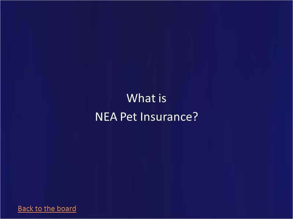 Endorsed by The American Veterinary Medical Association Group Health & Life Insurance