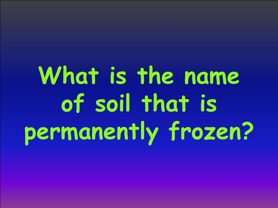 What is the name of soil that is permanently frozen