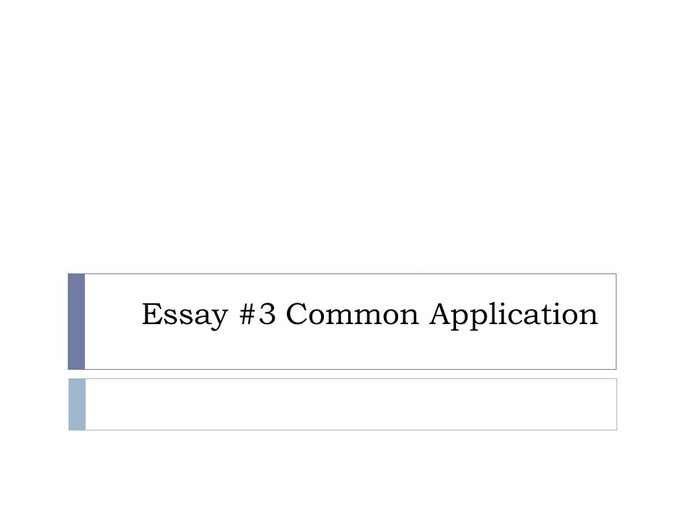 Essay #3 Common Application