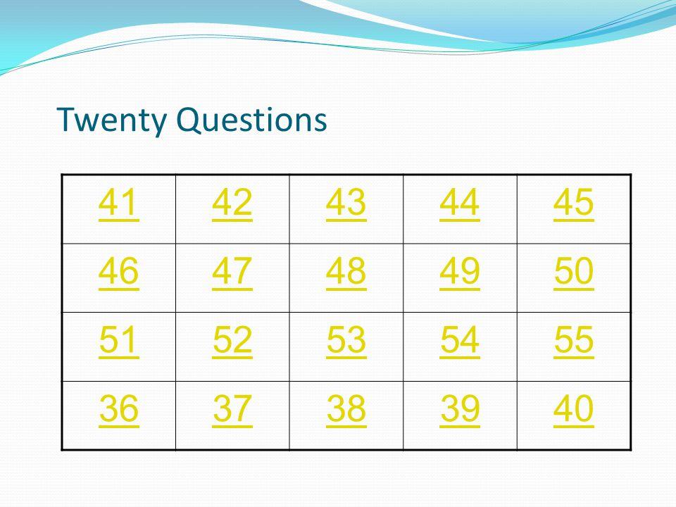 Twenty Questions 2122232425 2627282930 3132333435 3637383940