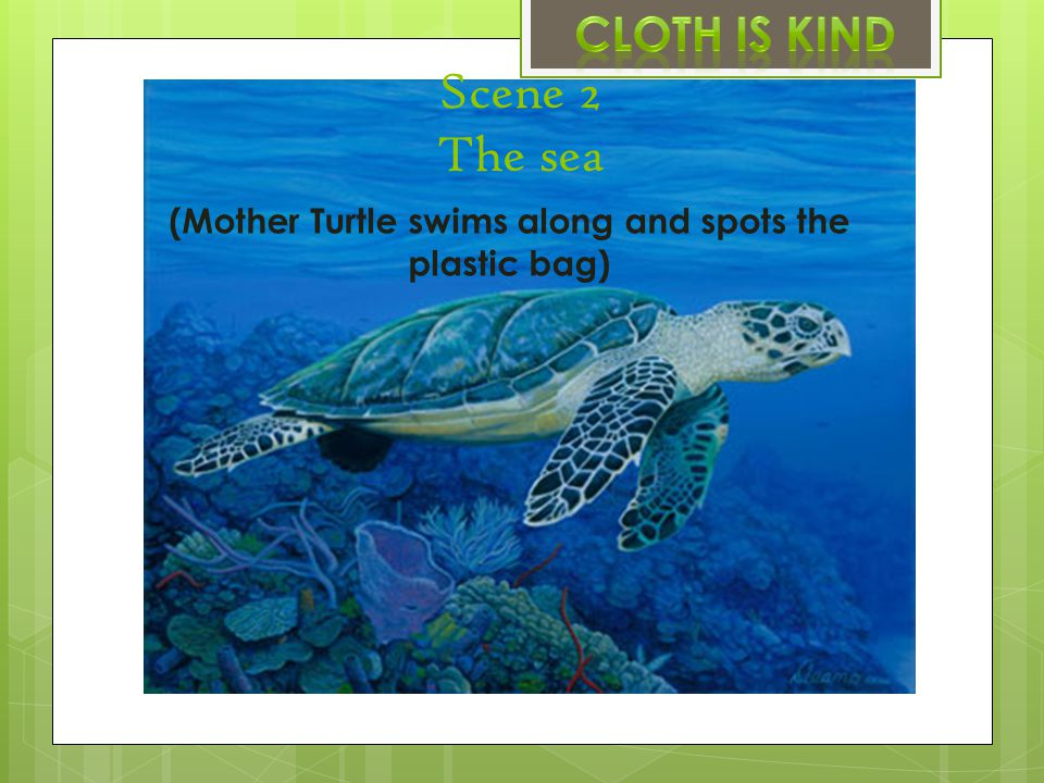 Scene 2 The sea (Mother Turtle swims along and spots the plastic bag)
