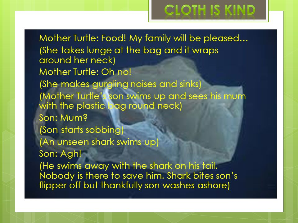 Mother Turtle: Food.