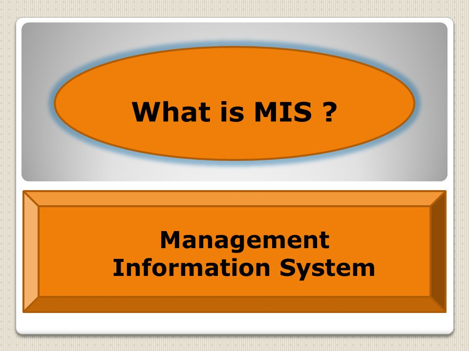 What is MIS Management Information System