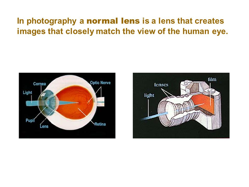 In photography a normal lens is a lens that creates images that closely match the view of the human eye.