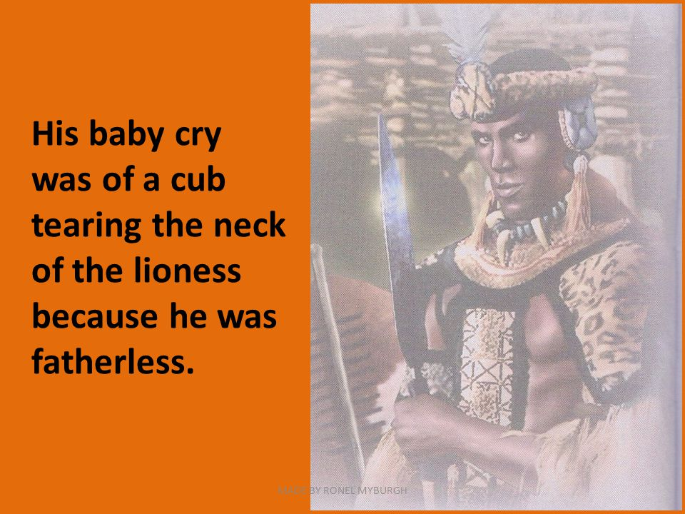 His baby cry was of a cub tearing the neck of the lioness because he was fatherless.