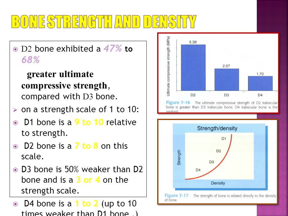 D2 bone exhibited a 47% to 68% greater ultimate compressive strength, compared with D3 bone.