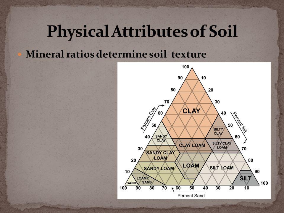 Mineral ratios determine soil texture