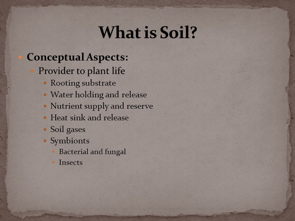 Physical Aspects: Minerals (from rocks) Sand Silt Clay and Colloids Organic Matter Plants and Roots Detritus (decaying organic matter) Animal waste (including microbes) Pore Space Air Water