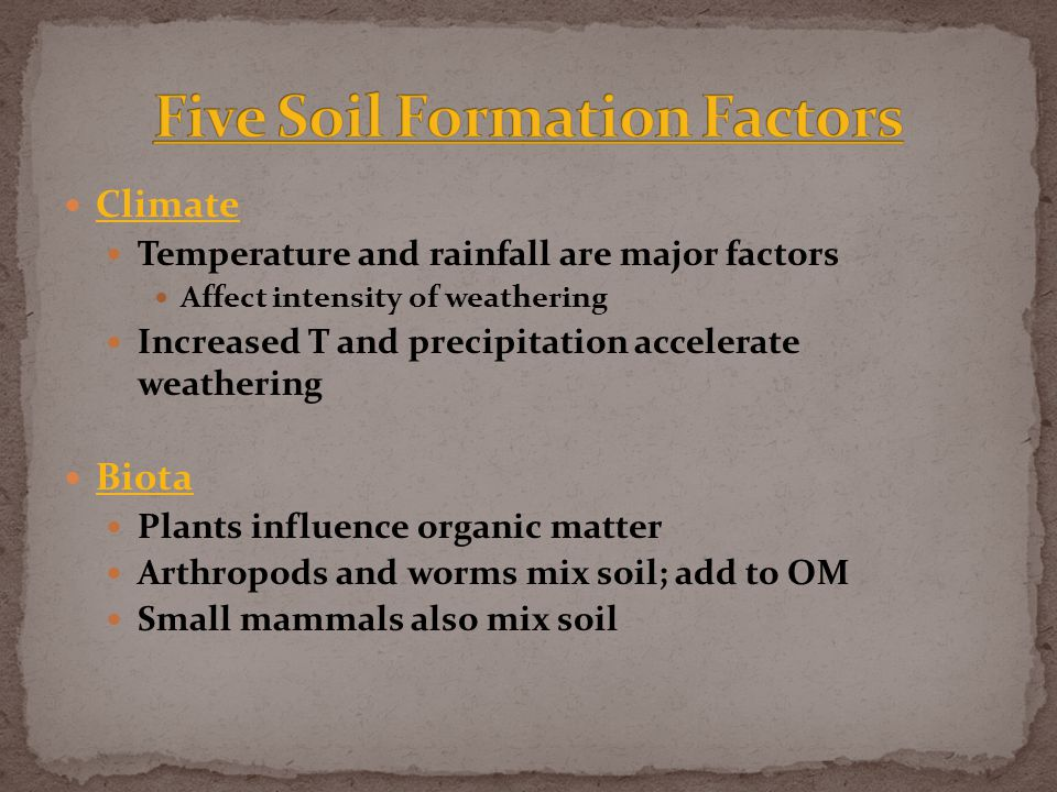 Climate Temperature and rainfall are major factors Affect intensity of weathering Increased T and precipitation accelerate weathering Biota Plants influence organic matter Arthropods and worms mix soil; add to OM Small mammals also mix soil