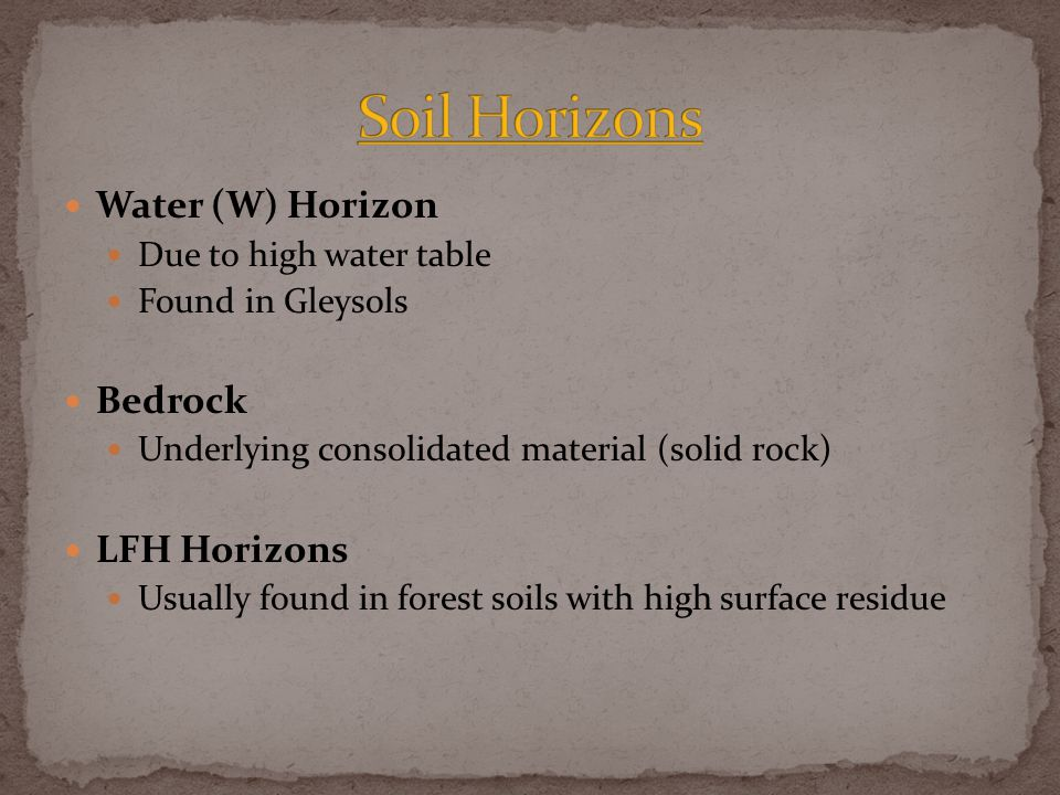 Water (W) Horizon Due to high water table Found in Gleysols Bedrock Underlying consolidated material (solid rock) LFH Horizons Usually found in forest soils with high surface residue