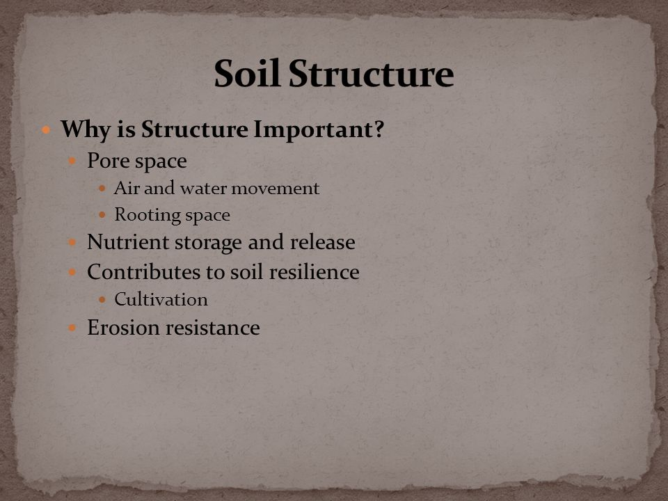 Why is Structure Important.