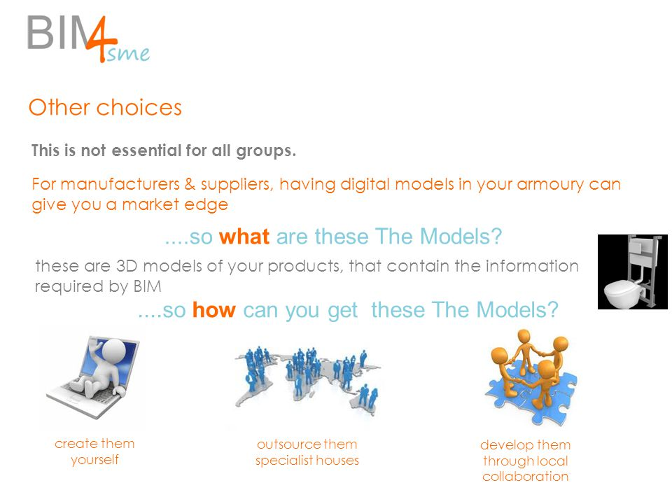 Other choices This is not essential for all groups.....so what are these The Models.