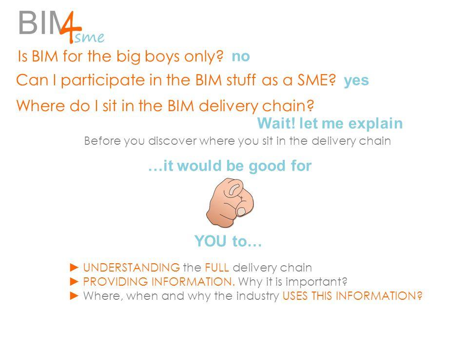 Where do I sit in the BIM delivery chain. Can I participate in the BIM stuff as a SME.