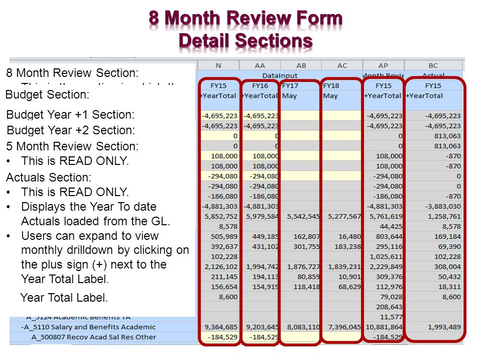 8 Month Review Section: This is the section in which the 8 Month Review data is stored.