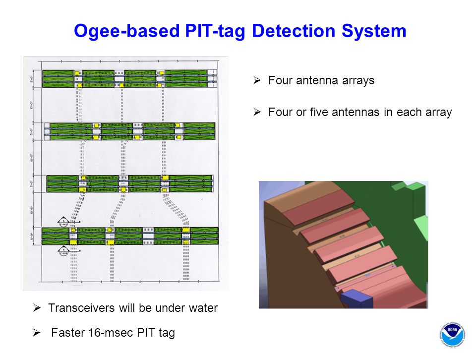 Ogee-based PIT-tag Detection System  Four antenna arrays  Four or five antennas in each array  Transceivers will be under water  Faster 16-msec PIT tag