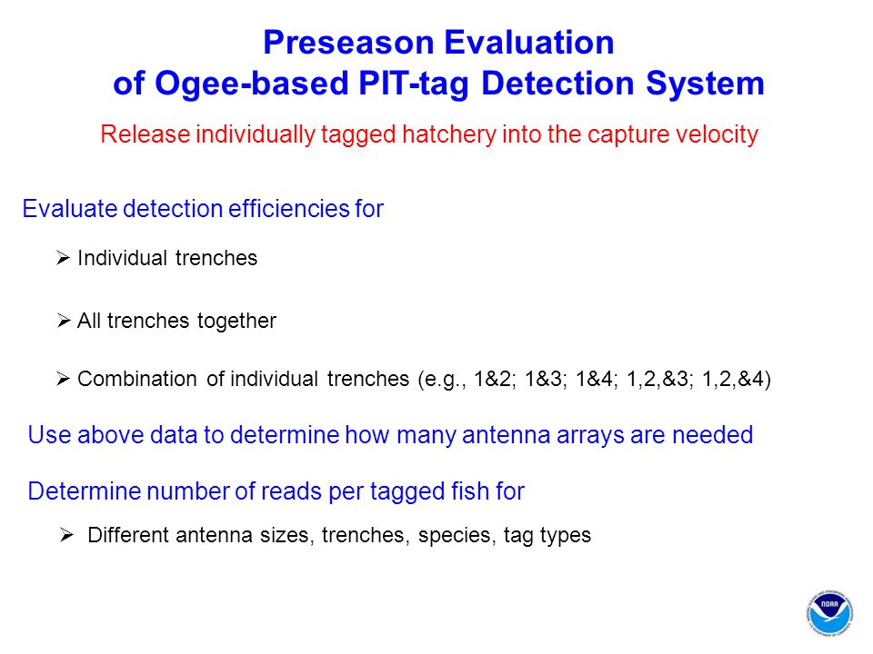 Preseason Evaluation of Ogee-based PIT-tag Detection System Release individually tagged hatchery into the capture velocity  Individual trenches Evaluate detection efficiencies for  Combination of individual trenches (e.g., 1&2; 1&3; 1&4; 1,2,&3; 1,2,&4)  All trenches together Determine number of reads per tagged fish for  Different antenna sizes, trenches, species, tag types Use above data to determine how many antenna arrays are needed