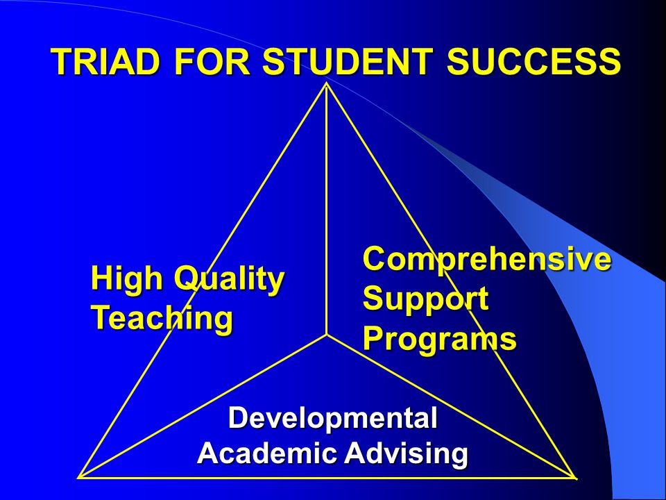 TRIAD FOR STUDENT SUCCESS High Quality Teaching Comprehensive Support Programs Developmental Academic Advising