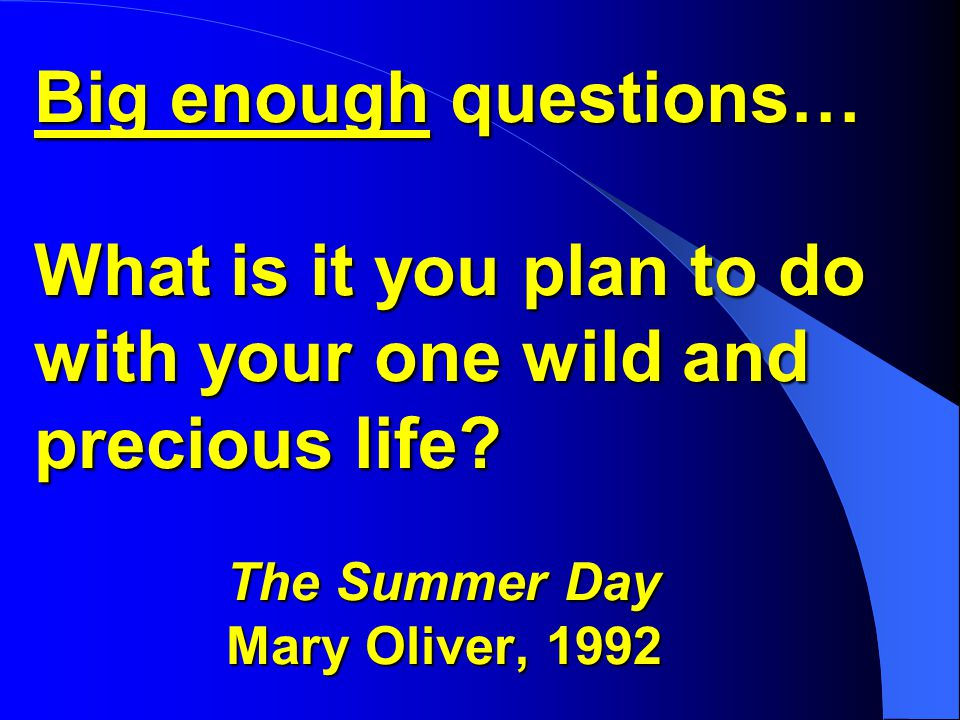 Big enough questions… What is it you plan to do with your one wild and precious life.