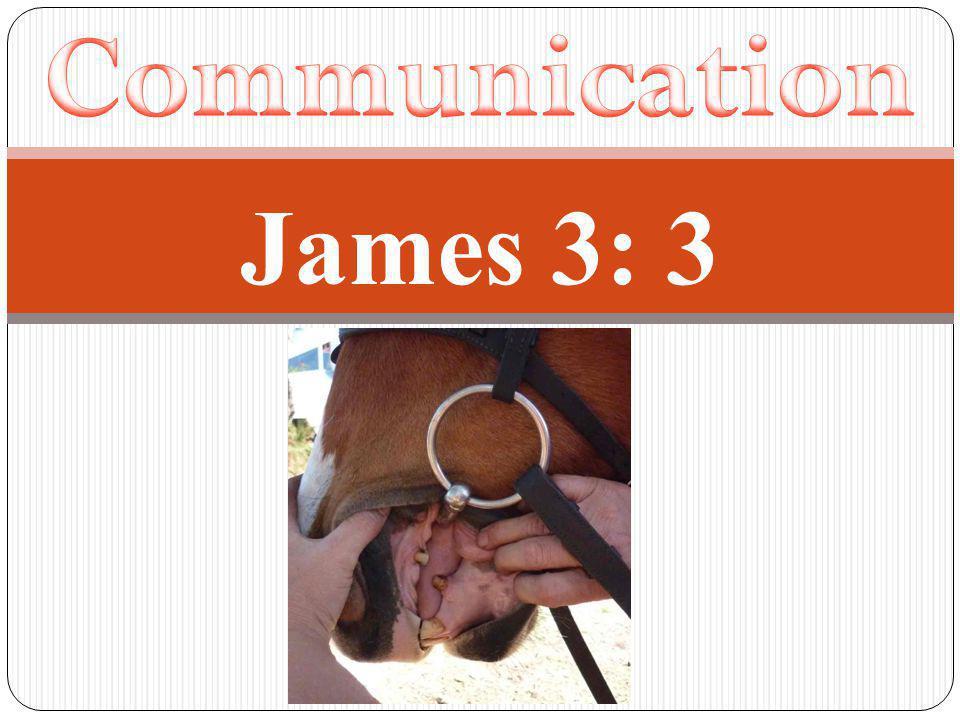 James 3: 3