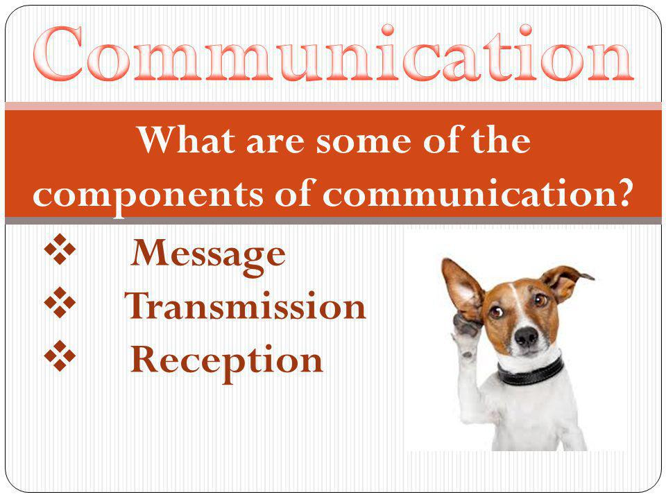 What are some of the components of communication  Message  Transmission  Reception