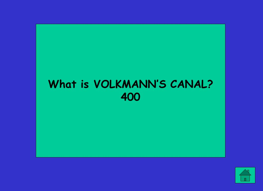 What is VOLKMANN'S CANAL? 400