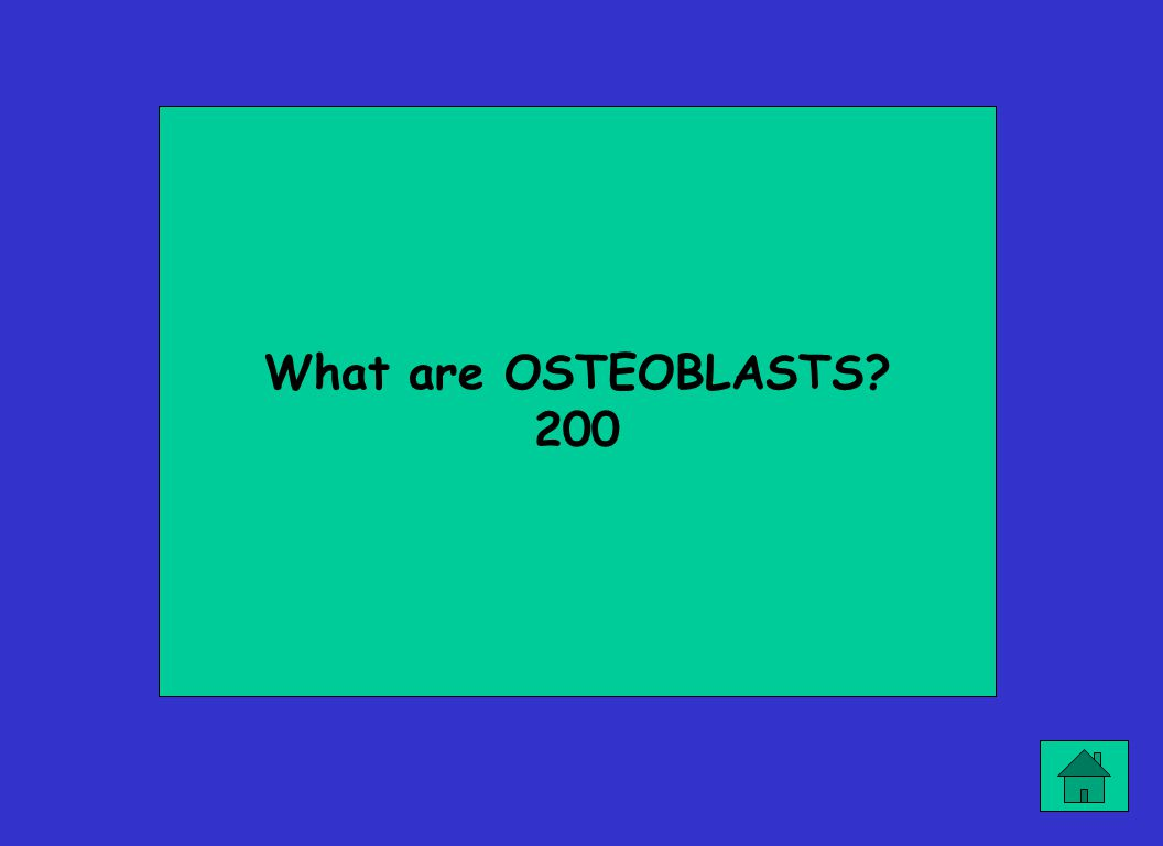 What are OSTEOBLASTS? 200