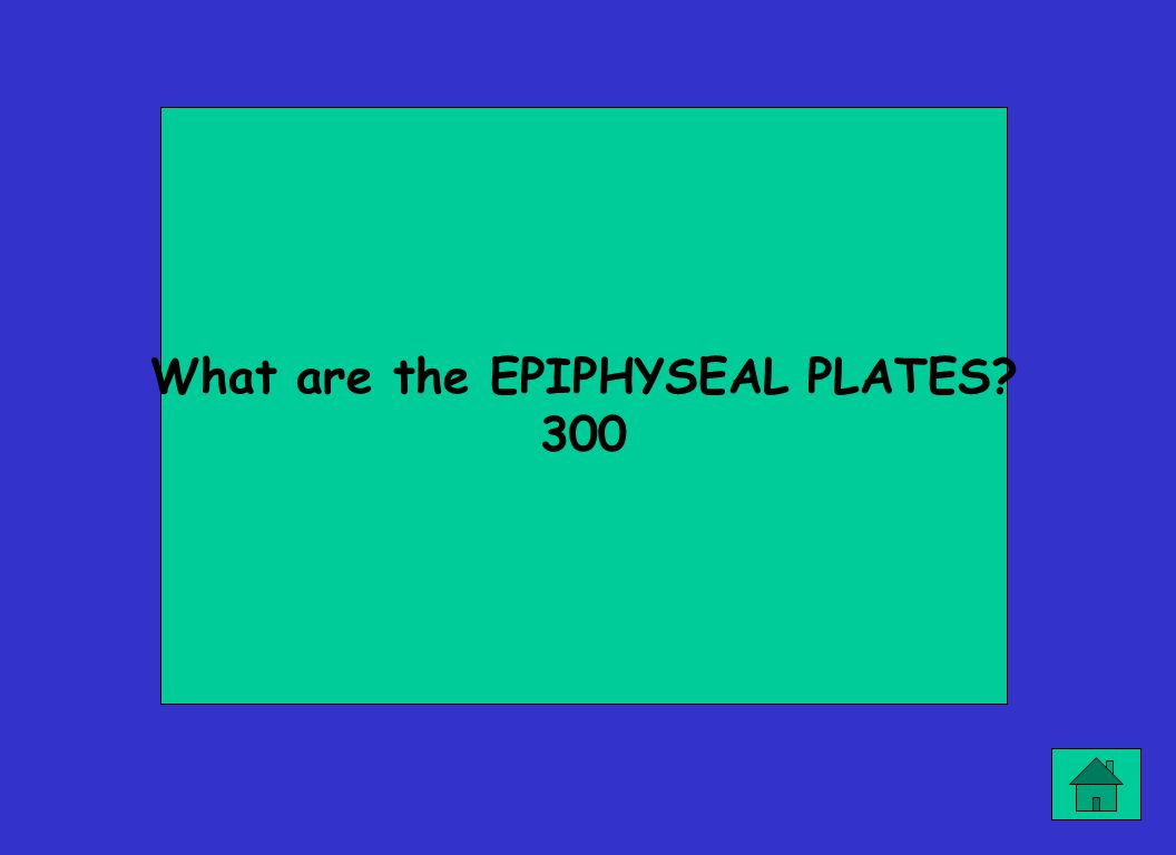 What are the EPIPHYSEAL PLATES? 300