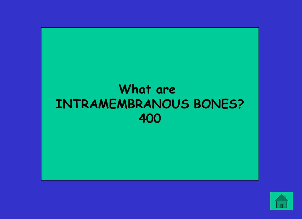 What are INTRAMEMBRANOUS BONES? 400