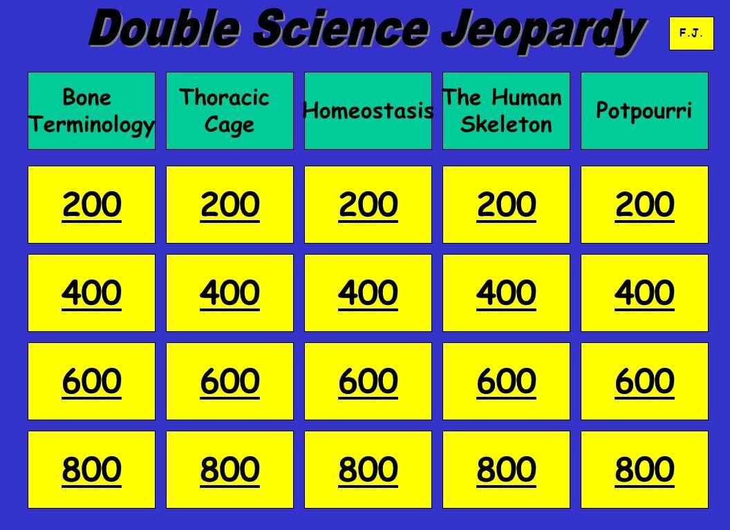 Bone Terminology Thoracic Cage Homeostasis The Human Skeleton Potpourri 200 400 600 800 200 400 600 800 400 600 800 400 600 800 F.J.