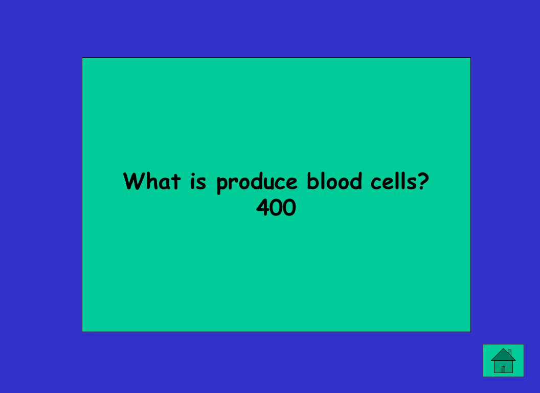 What is produce blood cells? 400