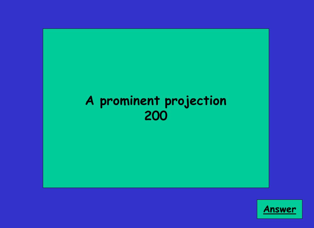 A prominent projection 200 Answer