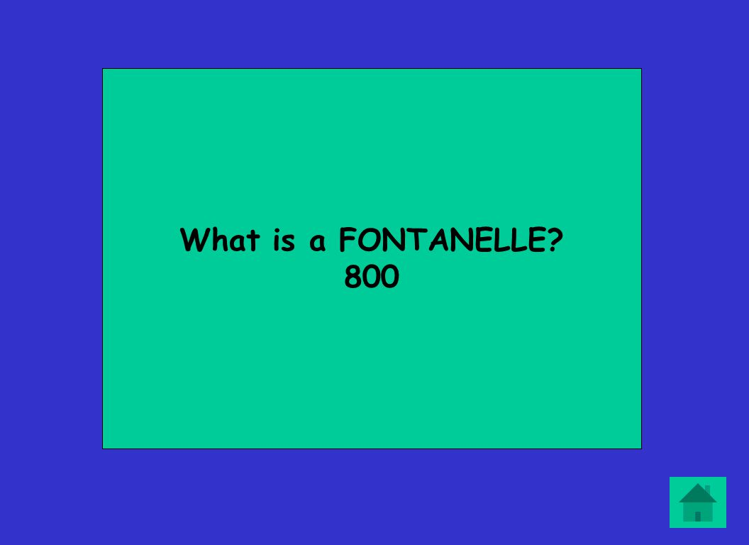 What is a FONTANELLE? 800