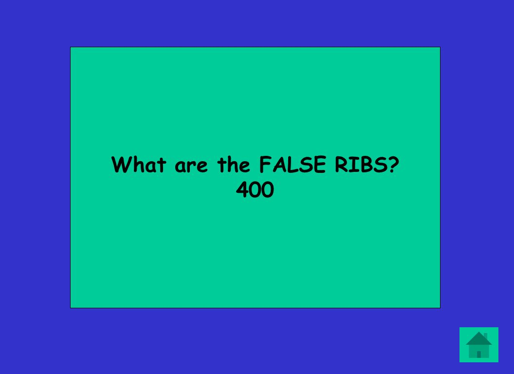 What are the FALSE RIBS? 400
