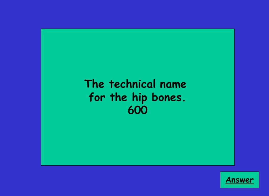 The technical name for the hip bones. 600 Answer