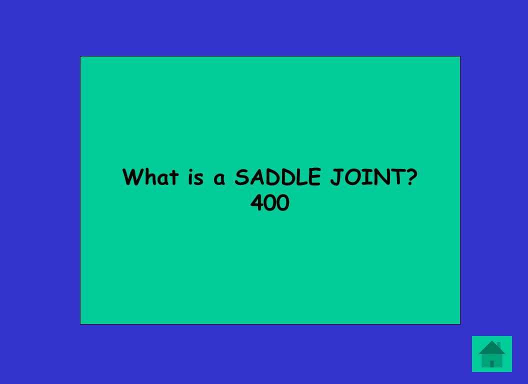 What is a SADDLE JOINT? 400