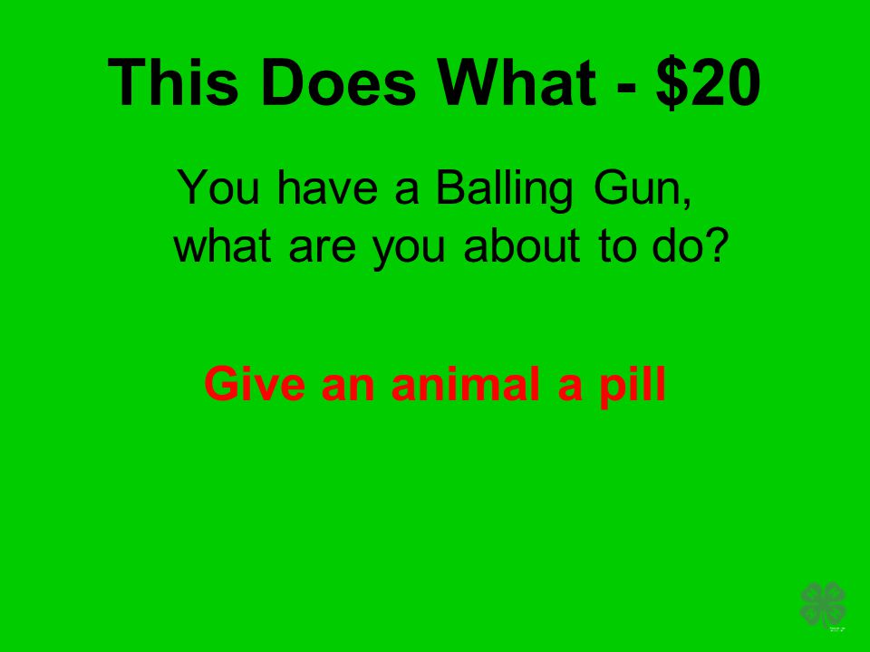 This Does What - $20 You have a Balling Gun, what are you about to do Give an animal a pill