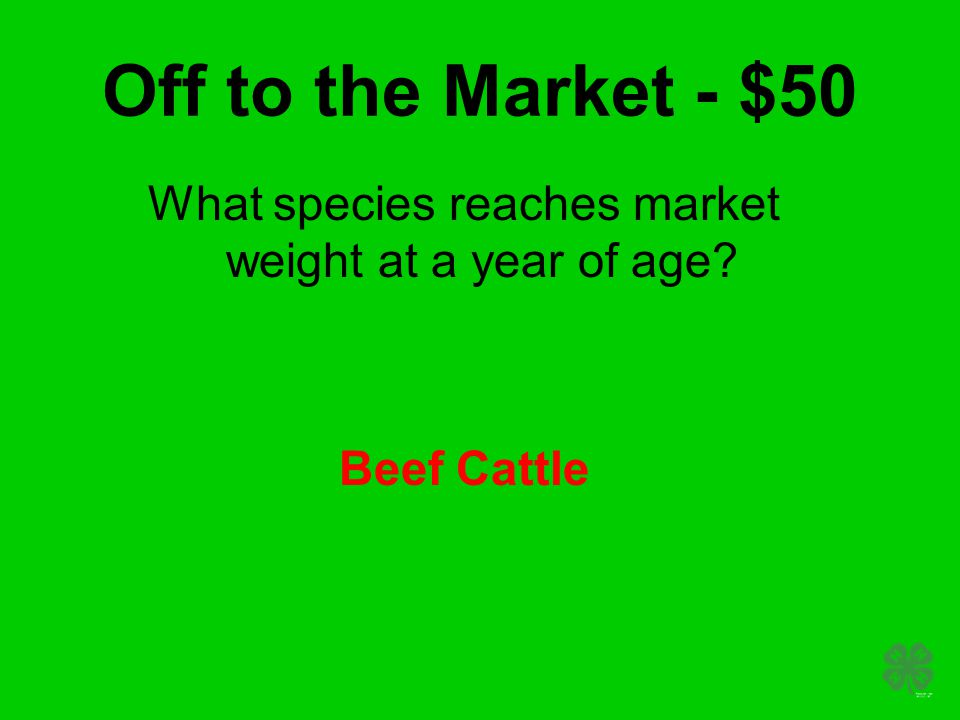 Off to the Market - $50 What species reaches market weight at a year of age Beef Cattle