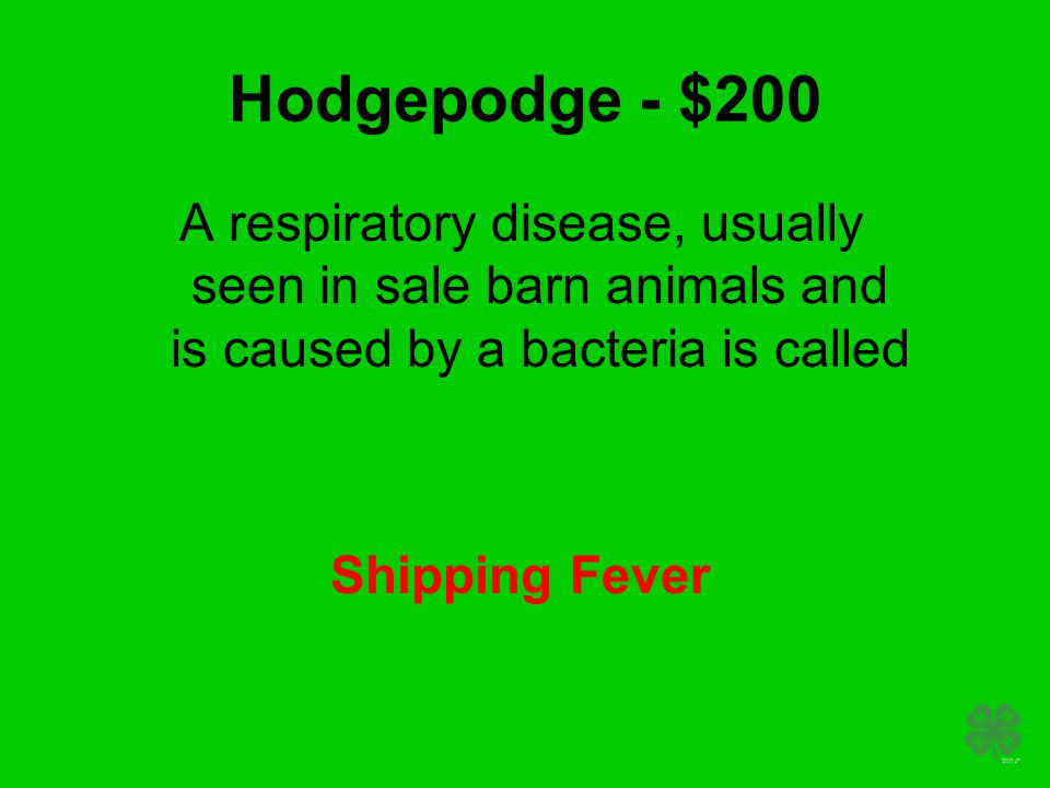 Hodgepodge - $200 A respiratory disease, usually seen in sale barn animals and is caused by a bacteria is called Shipping Fever