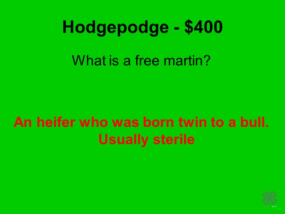 Hodgepodge - $400 What is a free martin? An heifer who was born twin to a bull. Usually sterile