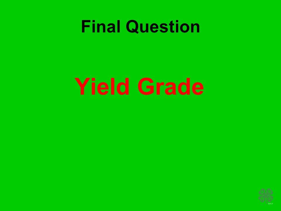 Final Question Yield Grade