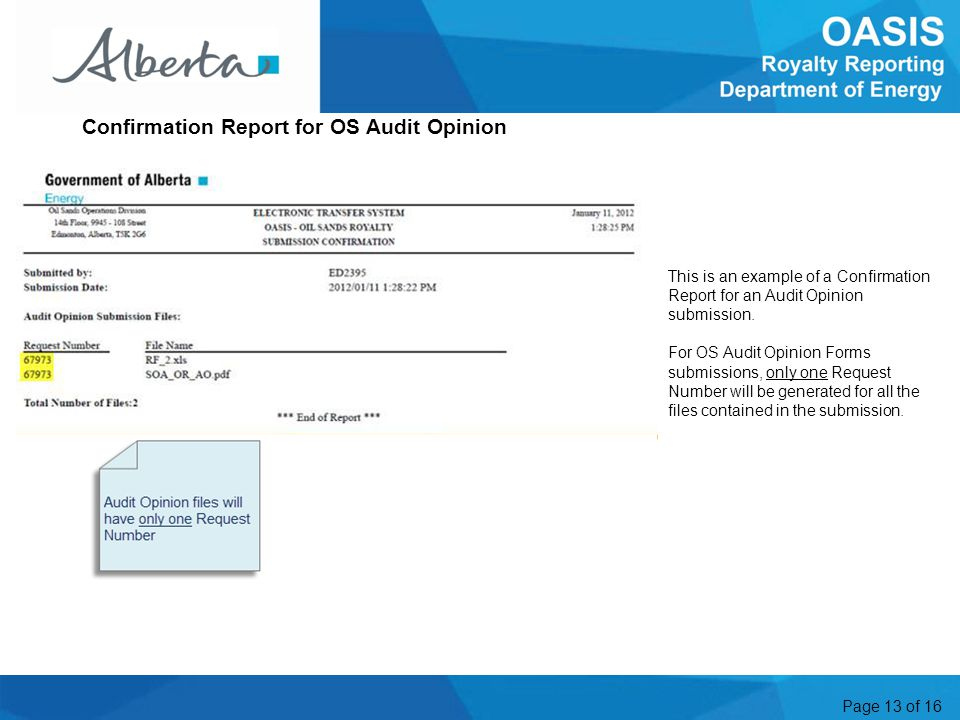 Page 13 of 16 This is an example of a Confirmation Report for an Audit Opinion submission.