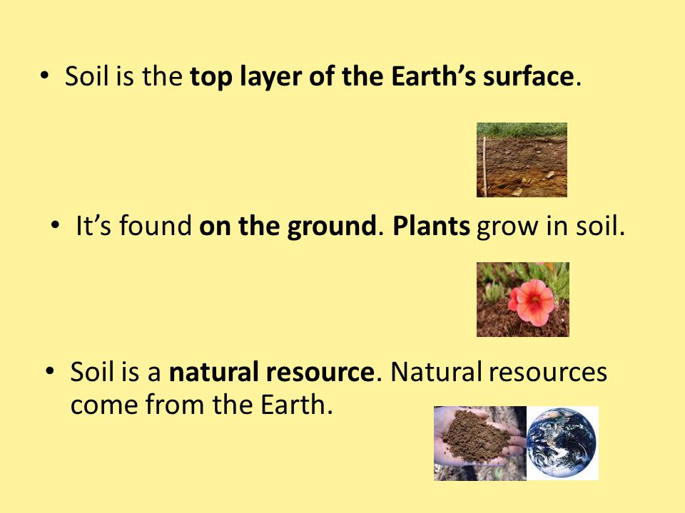 Soil is the top layer of the Earth's surface. It's found on the ground. Plants grow in soil. Soil is a natural resource. Natural resources come from t