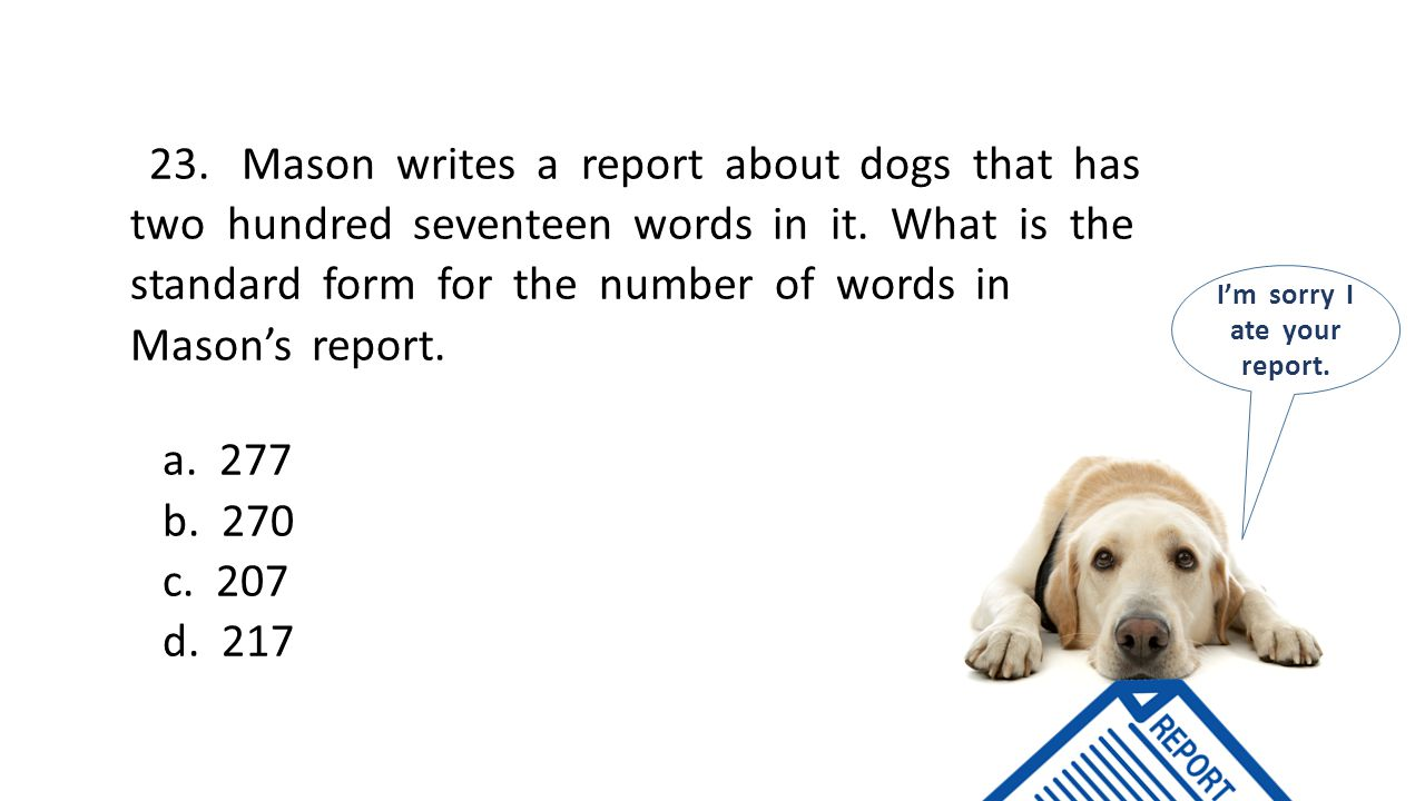 23. Mason writes a report about dogs that has two hundred seventeen words in it.