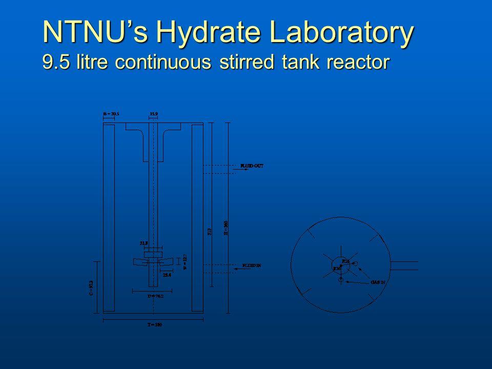 NTNU's Hydrate Laboratory 9.5 litre continuous stirred tank reactor