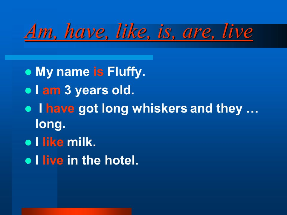 Am, have, like, is, are, live My name is Fluffy. I am 3 years old. I have got long whiskers and they … long. I like milk. I live in the hotel.