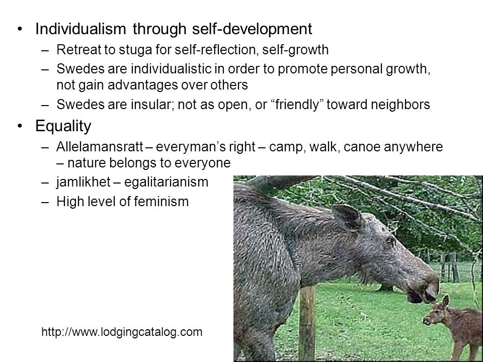 Individualism through self-development –Retreat to stuga for self-reflection, self-growth –Swedes are individualistic in order to promote personal growth, not gain advantages over others –Swedes are insular; not as open, or friendly toward neighbors Equality –Allelamansratt – everyman's right – camp, walk, canoe anywhere – nature belongs to everyone –jamlikhet – egalitarianism –High level of feminism http://www.lodgingcatalog.com
