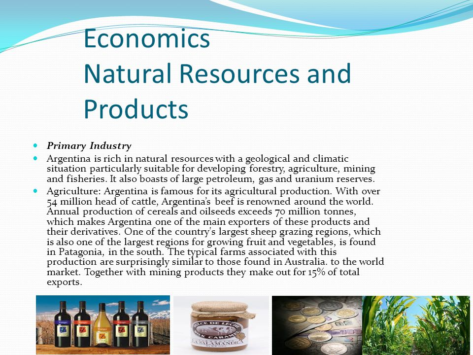 Economics Natural Resources and Products Primary Industry Argentina is rich in natural resources with a geological and climatic situation particularly suitable for developing forestry, agriculture, mining and fisheries.