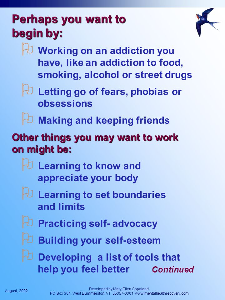 August, 2002 Developed by Mary Ellen Copeland PO Box 301, West Dummerston, VT 05357-0301 www.mentalhealthrecovery.com Perhaps you want to begin by:  Working on an addiction you have, like an addiction to food, smoking, alcohol or street drugs  Letting go of fears, phobias or obsessions  Making and keeping friends Other things you may want to work on might be:  Learning to know and appreciate your body  Learning to set boundaries and limits  Practicing self- advocacy  Building your self-esteem  Developing a list of tools that help you feel better Continued